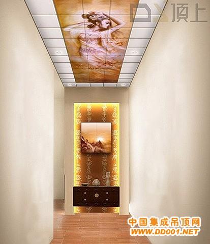 顶上集成吊顶个性化扣板 我的空间我做主图片