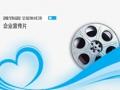 雅饰丽全屋集成吊顶企业宣传片 (173播放)