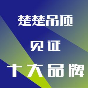Hi新十年!见证十大品牌——楚楚吊顶