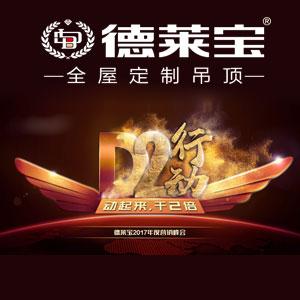 德莱宝【D2行动】2017年度营销峰会