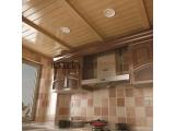 特立信吊顶供应厨房系列