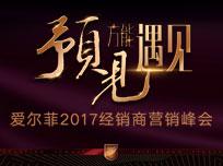 爱尔菲2017经销商营销峰会暨2018年度品牌战略发布会 (624播放)