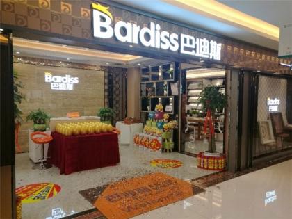 巴迪斯精工顶墙新疆专卖店