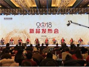 敦煌·楚楚吊顶2018新品发布会—会议现场