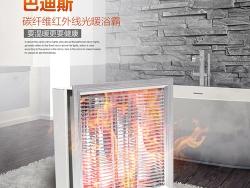 巴迪斯碳纤维L-C300