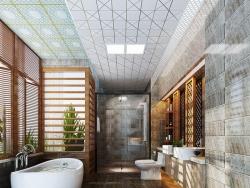 宝仕龙全景顶-浴室吊顶系列