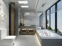 鼎美顶墙现代风格—卫浴