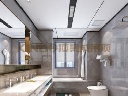 今顶吊顶大板系列—哑白卫浴