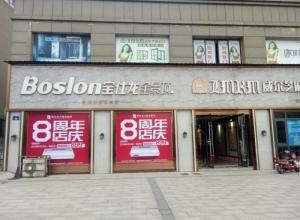 宝仕龙大板全景顶浙江兰溪专卖店