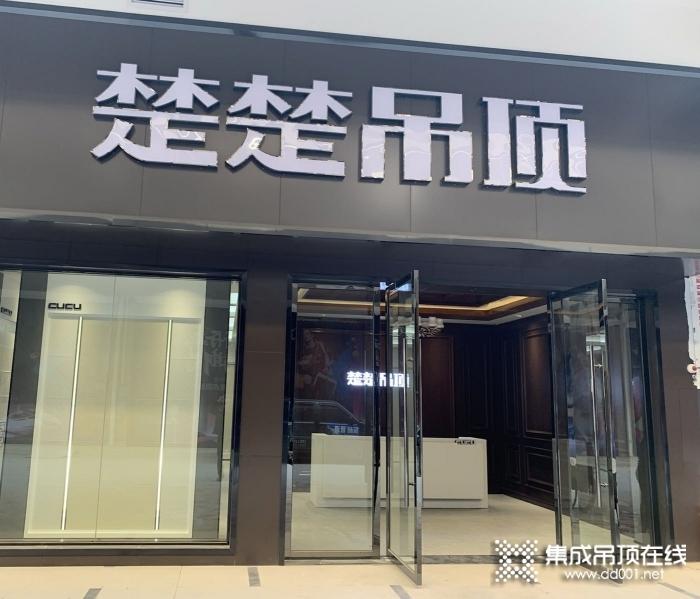 楚楚吊顶江西定南县专卖店