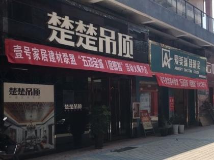 楚楚吊顶江西吉安县专卖店