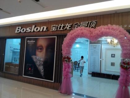 宝仕龙全景顶江苏泰州市专卖店
