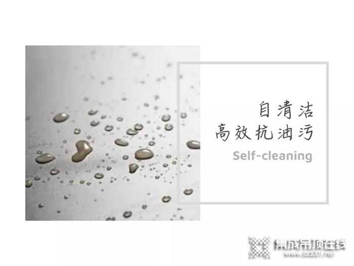 粽叶飘香,华帝守护家庭的洁净健康生活,在烟火气中谱写家的温度。