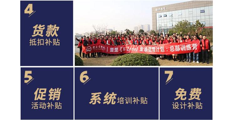 楚楚顶墙招商海报_11