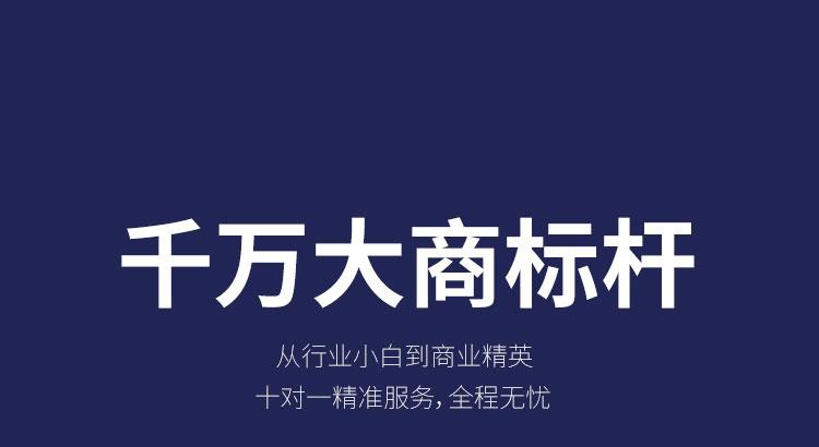 楚楚顶墙招商海报_38