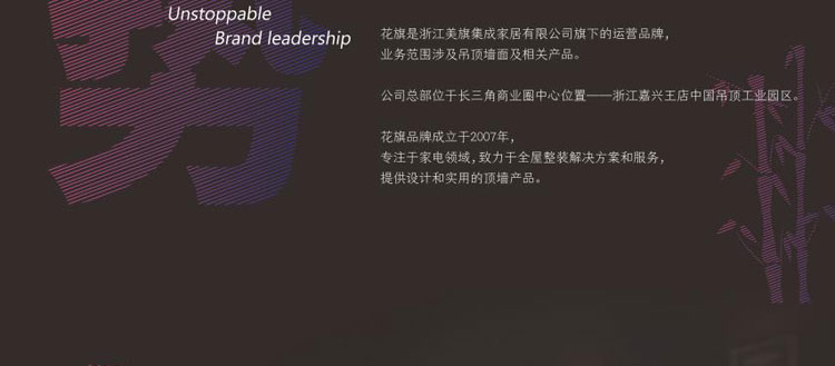 花旗吊顶招商海报_08