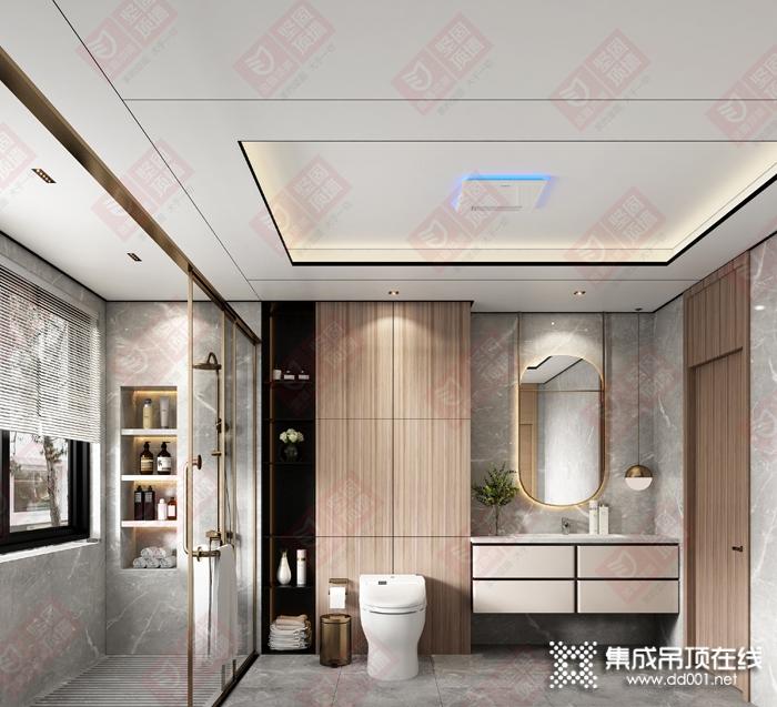 金盾顶美顶墙卫浴大板吊顶装修效果图