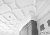 金盾顶美:吊顶装修,选石膏板or蜂窝大板? (1025播放)
